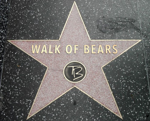 walk of bears_logo